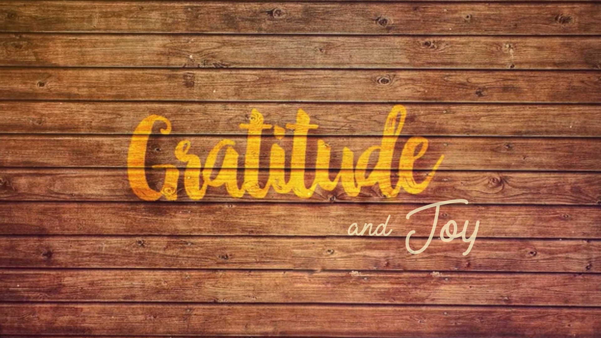 Gratitude & Joy